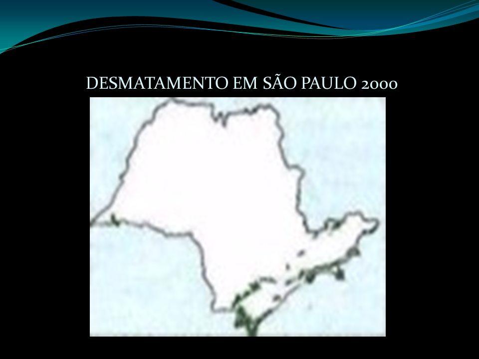 DESMATAMENTO EM SÃO PAULO 2000