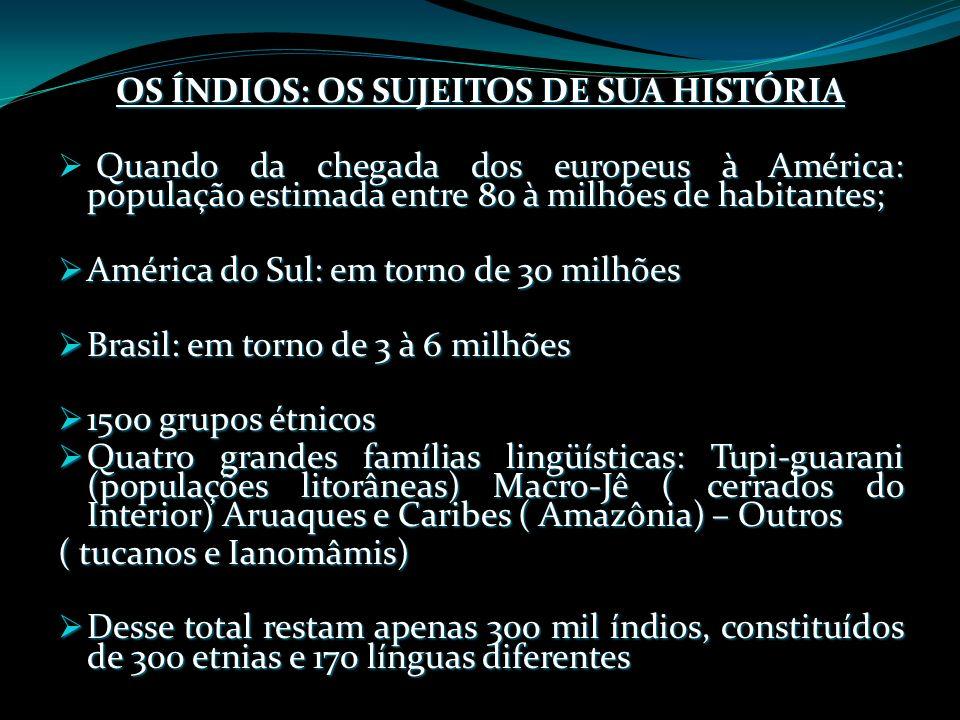 OS ÍNDIOS: OS SUJEITOS DE SUA HISTÓRIA