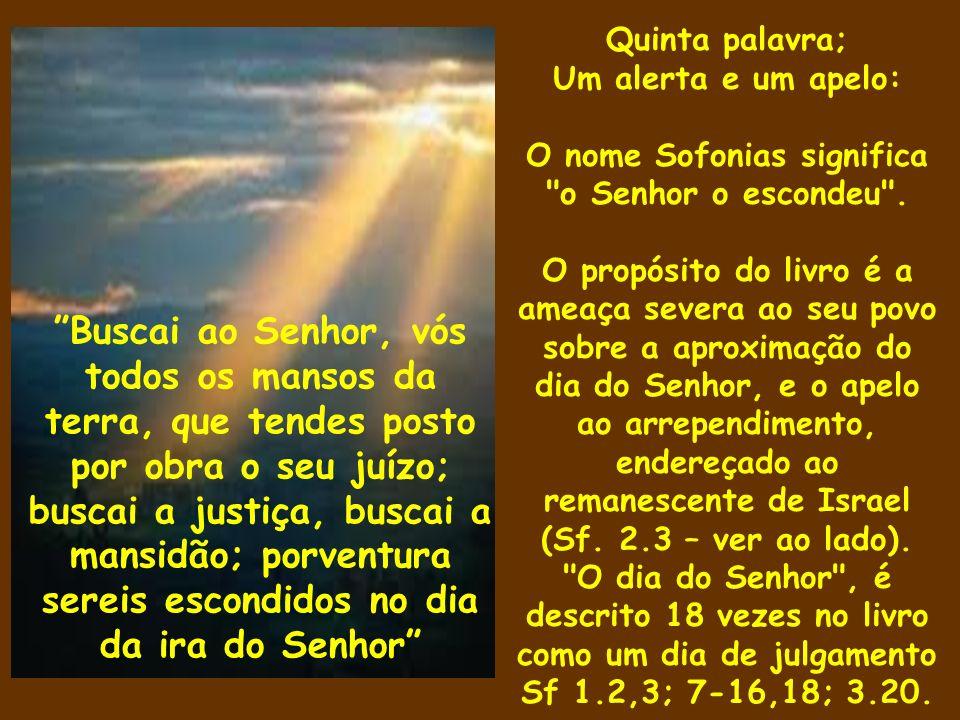 O nome Sofonias significa o Senhor o escondeu .