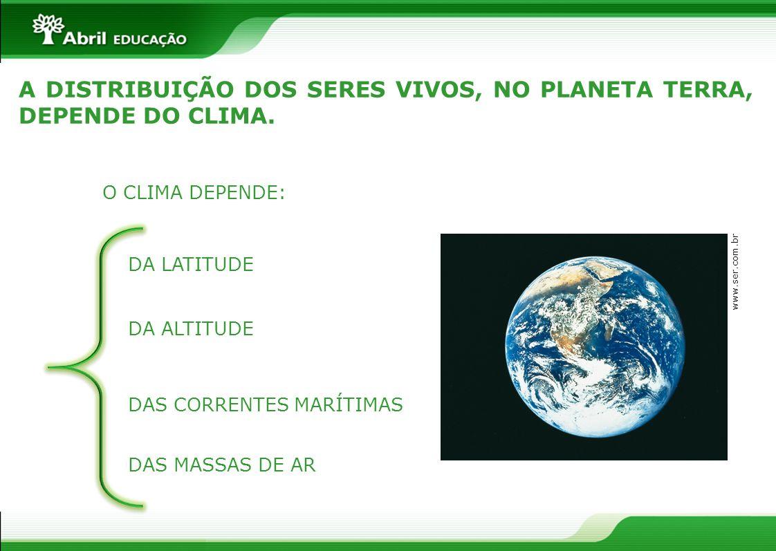 A DISTRIBUIÇÃO DOS SERES VIVOS, NO PLANETA TERRA, DEPENDE DO CLIMA.