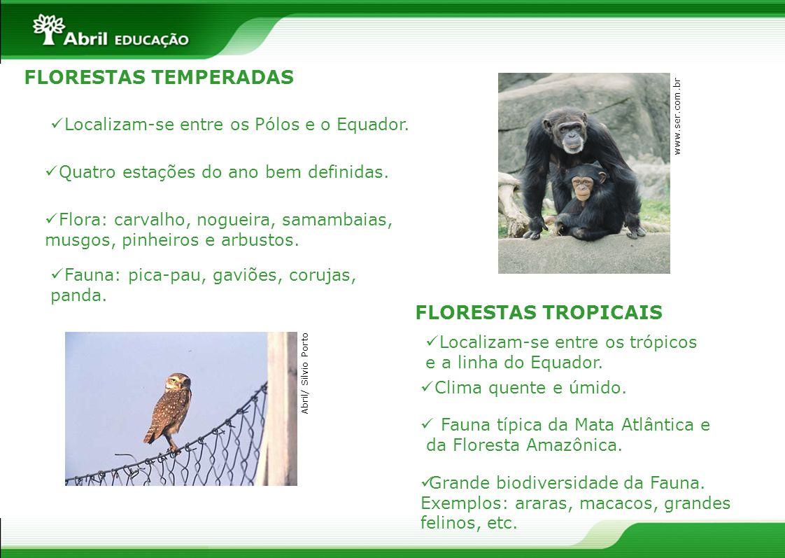 FLORESTAS TEMPERADAS FLORESTAS TROPICAIS