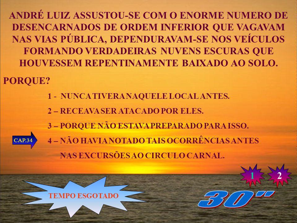 ANDRÉ LUIZ ASSUSTOU-SE COM O ENORME NUMERO DE DESENCARNADOS DE ORDEM INFERIOR QUE VAGAVAM NAS VIAS PÚBLICA, DEPENDURAVAM-SE NOS VEÍCULOS FORMANDO VERDADEIRAS NUVENS ESCURAS QUE HOUVESSEM REPENTINAMENTE BAIXADO AO SOLO.