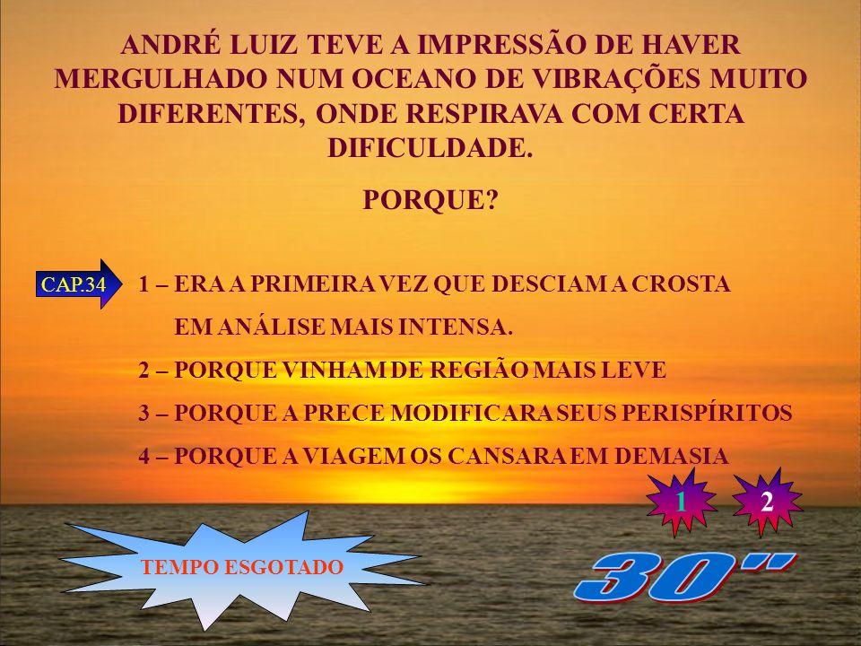 ANDRÉ LUIZ TEVE A IMPRESSÃO DE HAVER MERGULHADO NUM OCEANO DE VIBRAÇÕES MUITO DIFERENTES, ONDE RESPIRAVA COM CERTA DIFICULDADE.