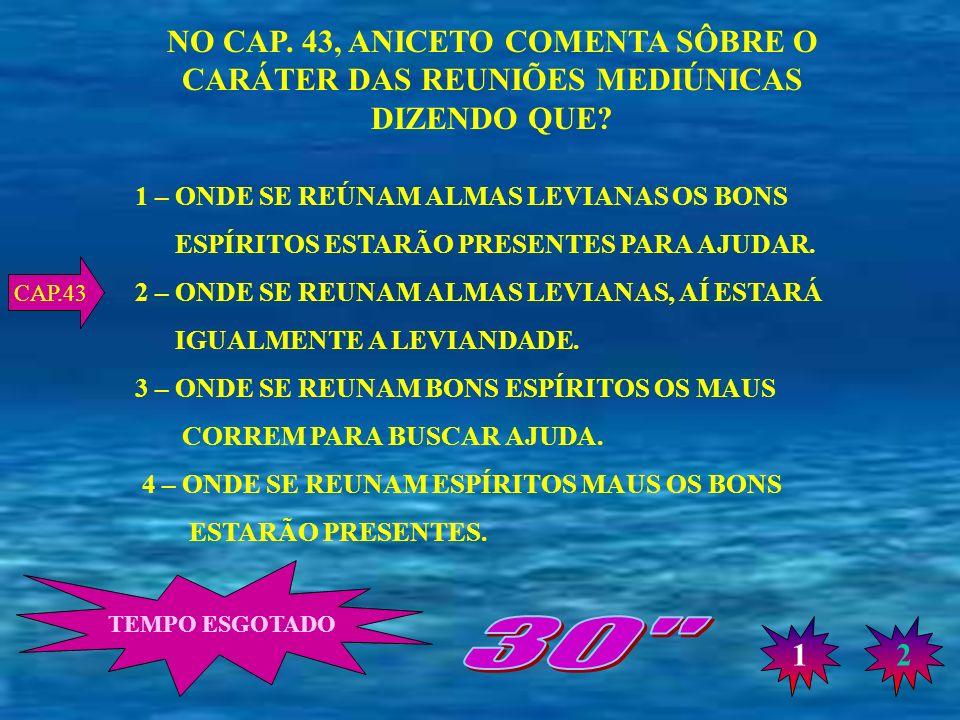 NO CAP. 43, ANICETO COMENTA SÔBRE O CARÁTER DAS REUNIÕES MEDIÚNICAS DIZENDO QUE