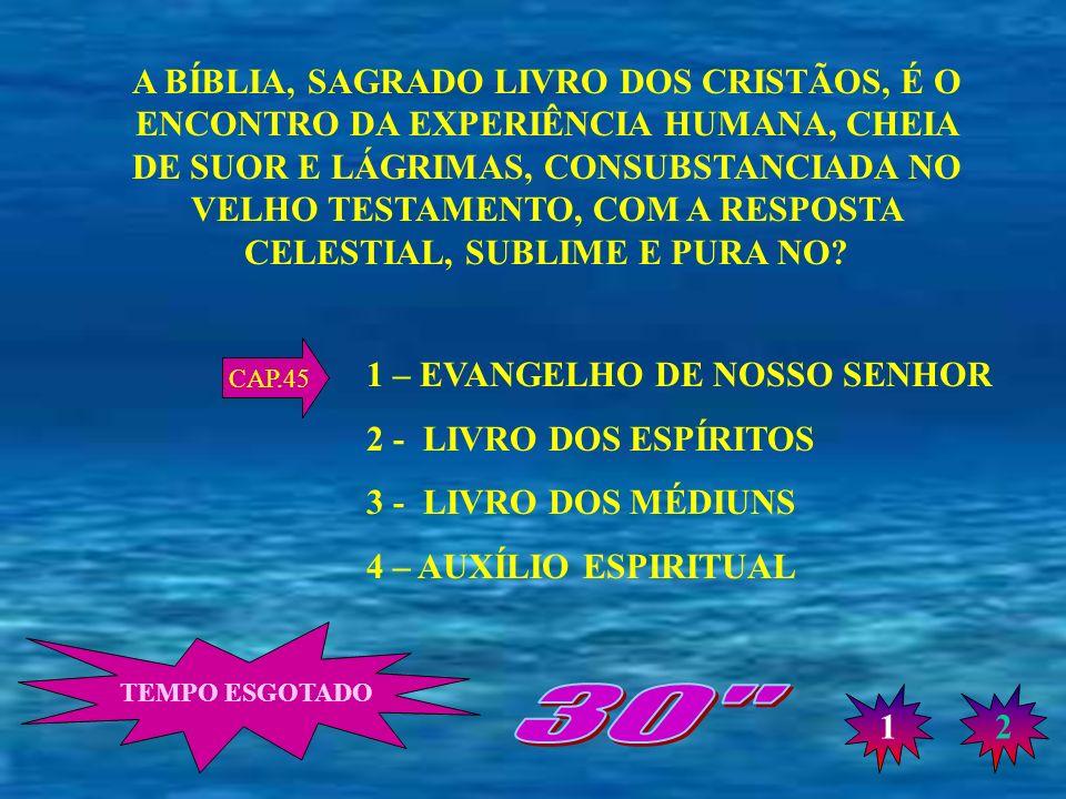 A BÍBLIA, SAGRADO LIVRO DOS CRISTÃOS, É O ENCONTRO DA EXPERIÊNCIA HUMANA, CHEIA DE SUOR E LÁGRIMAS, CONSUBSTANCIADA NO VELHO TESTAMENTO, COM A RESPOSTA CELESTIAL, SUBLIME E PURA NO