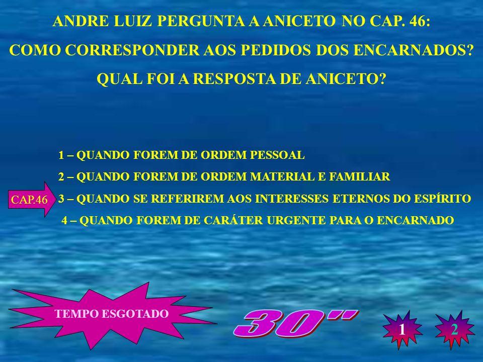 30 ANDRE LUIZ PERGUNTA A ANICETO NO CAP. 46: