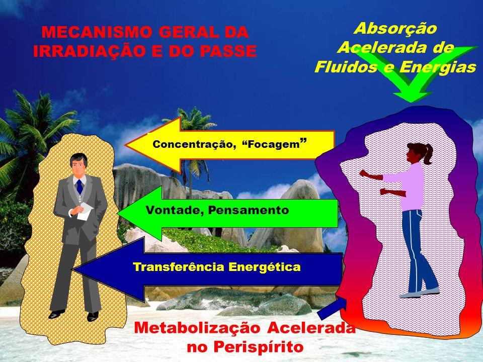 Absorção Acelerada de Fluidos e Energias