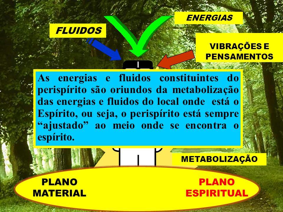ENERGIAS FLUIDOS. VIBRAÇÕES E. PENSAMENTOS. METABOLIZAÇÃO.