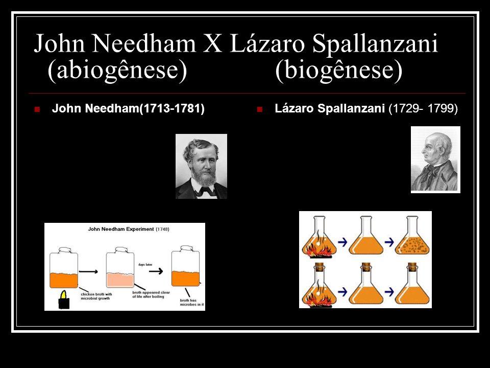 John Needham X Lázaro Spallanzani (abiogênese) (biogênese)