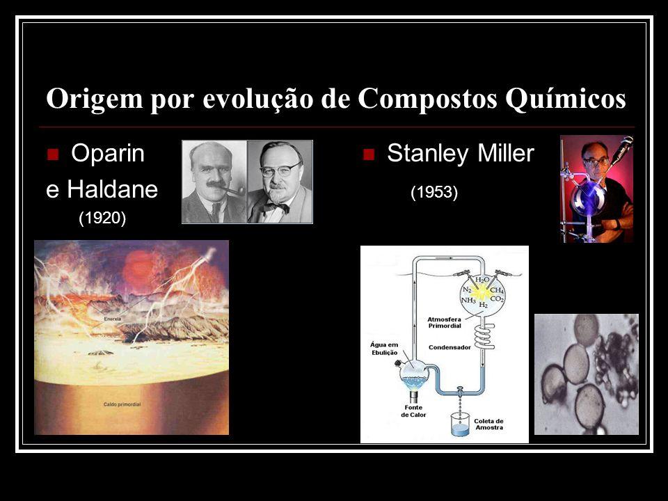 Origem por evolução de Compostos Químicos
