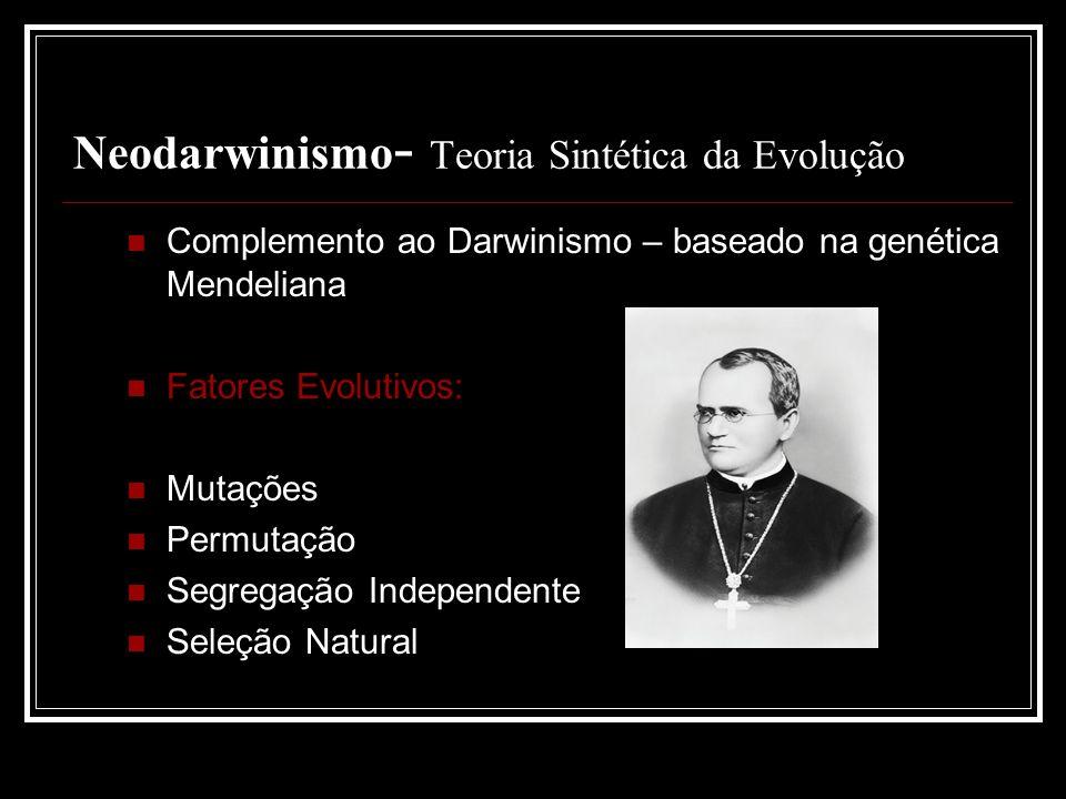 Neodarwinismo- Teoria Sintética da Evolução