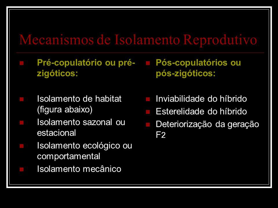 Mecanismos de Isolamento Reprodutivo