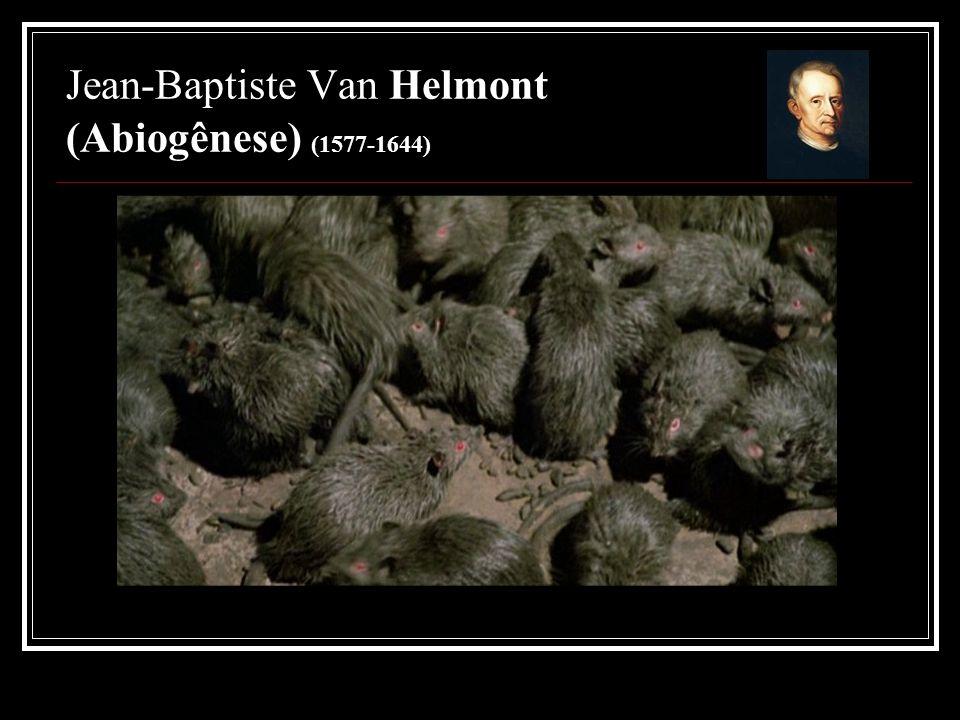Jean-Baptiste Van Helmont (Abiogênese) (1577-1644)