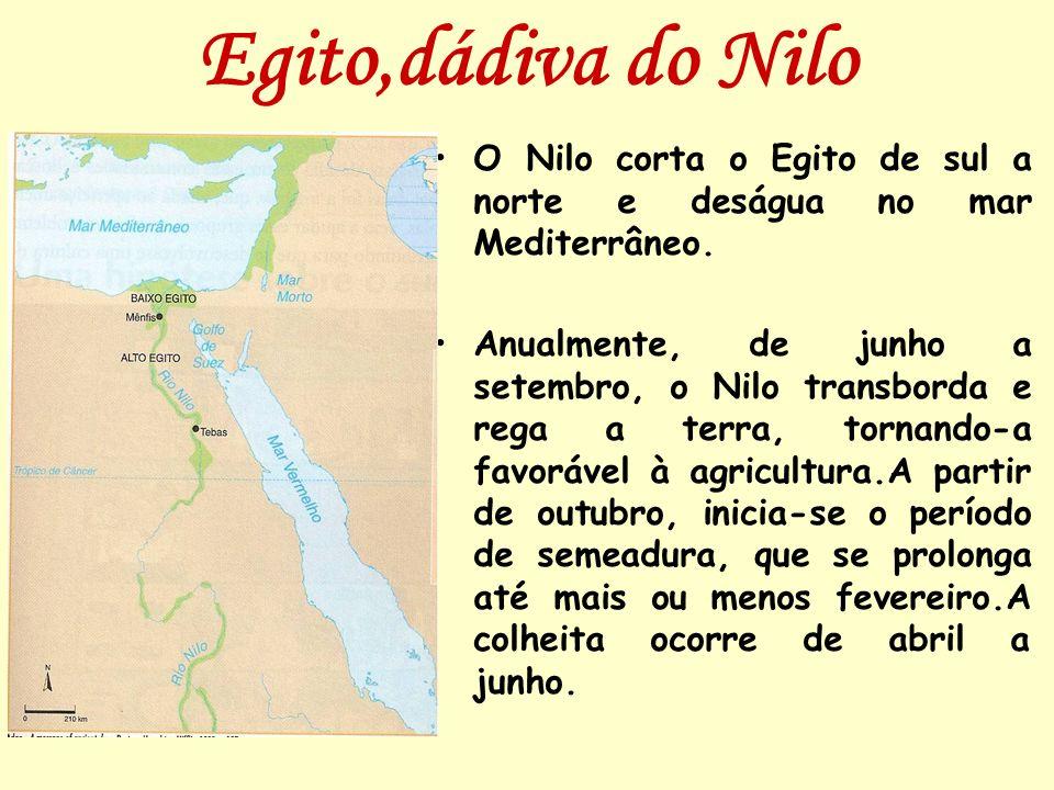 Egito,dádiva do NiloO Nilo corta o Egito de sul a norte e deságua no mar Mediterrâneo.