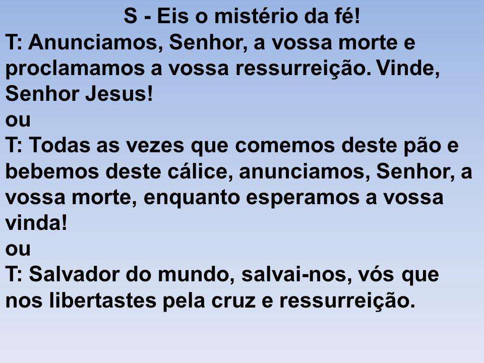 S - Eis o mistério da fé!T: Anunciamos, Senhor, a vossa morte e proclamamos a vossa ressurreição. Vinde, Senhor Jesus!