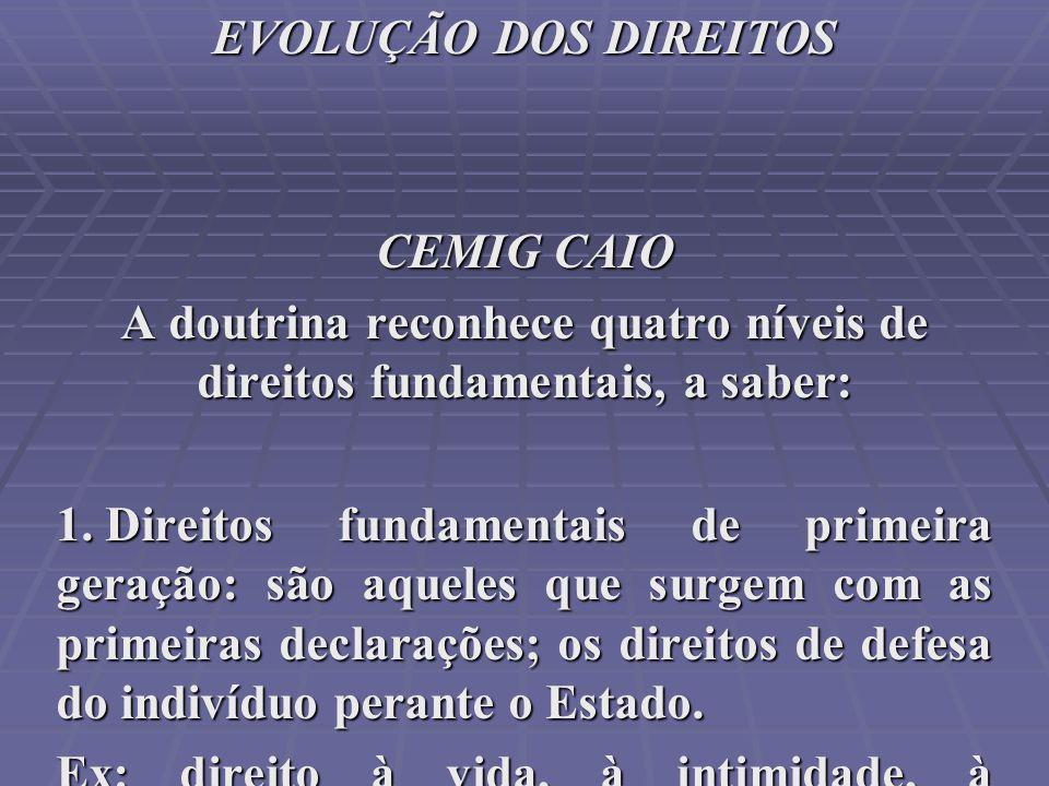 A doutrina reconhece quatro níveis de direitos fundamentais, a saber: