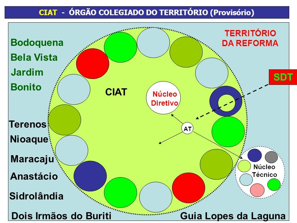 CIAT - ÓRGÃO COLEGIADO DO TERRITÓRIO (Provisório)