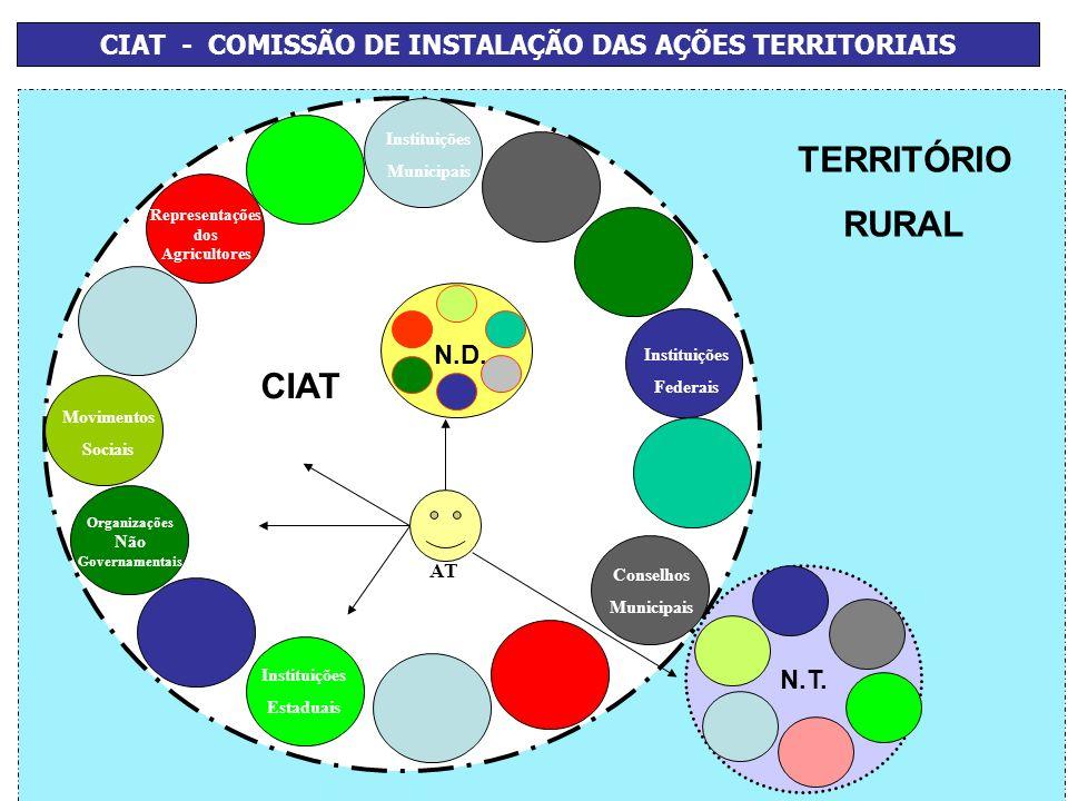 CIAT - COMISSÃO DE INSTALAÇÃO DAS AÇÕES TERRITORIAIS
