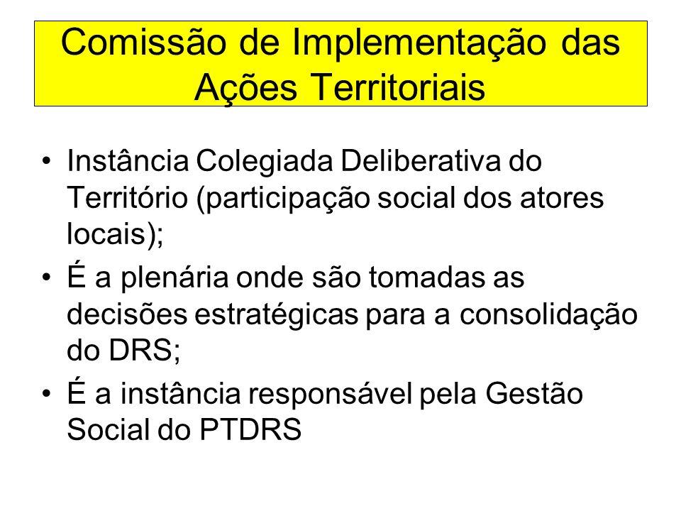 Comissão de Implementação das Ações Territoriais