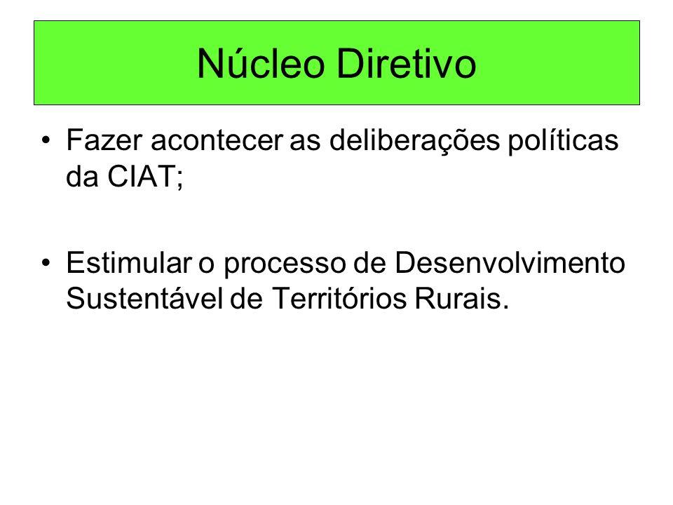 Núcleo Diretivo Fazer acontecer as deliberações políticas da CIAT;