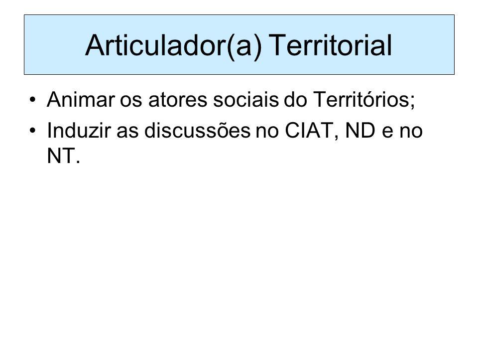 Articulador(a) Territorial