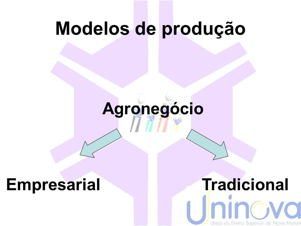 Modelos de produção Agronegócio Empresarial Tradicional