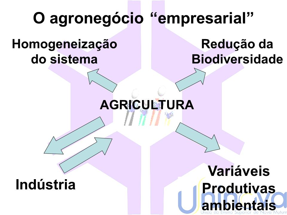 O agronegócio empresarial