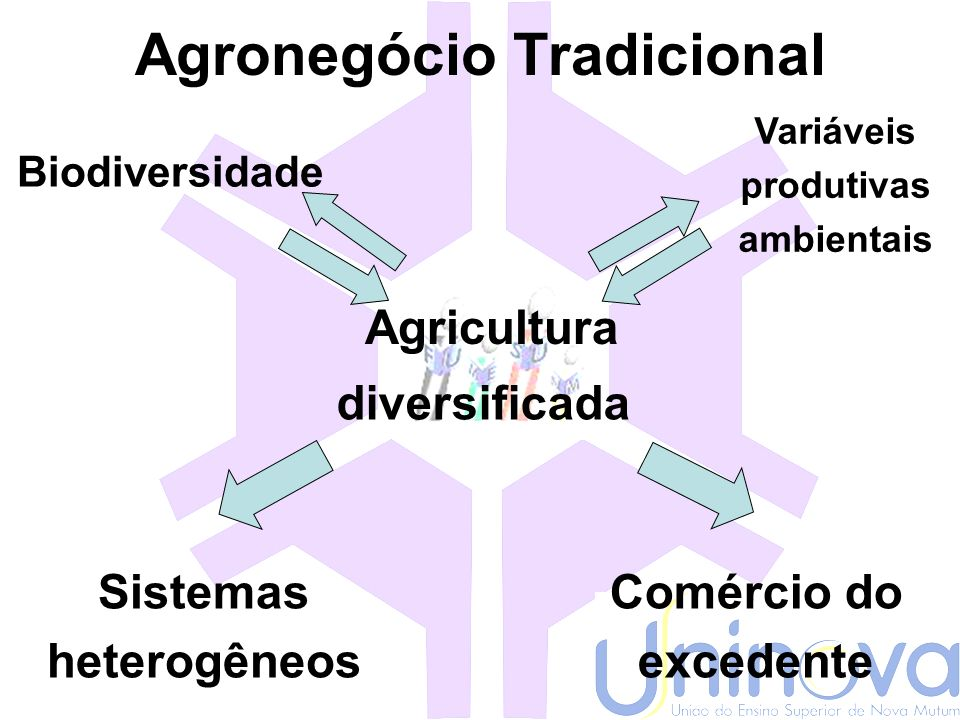 Agronegócio Tradicional