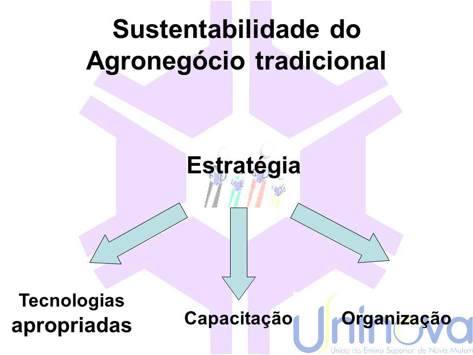 Sustentabilidade do Agronegócio tradicional