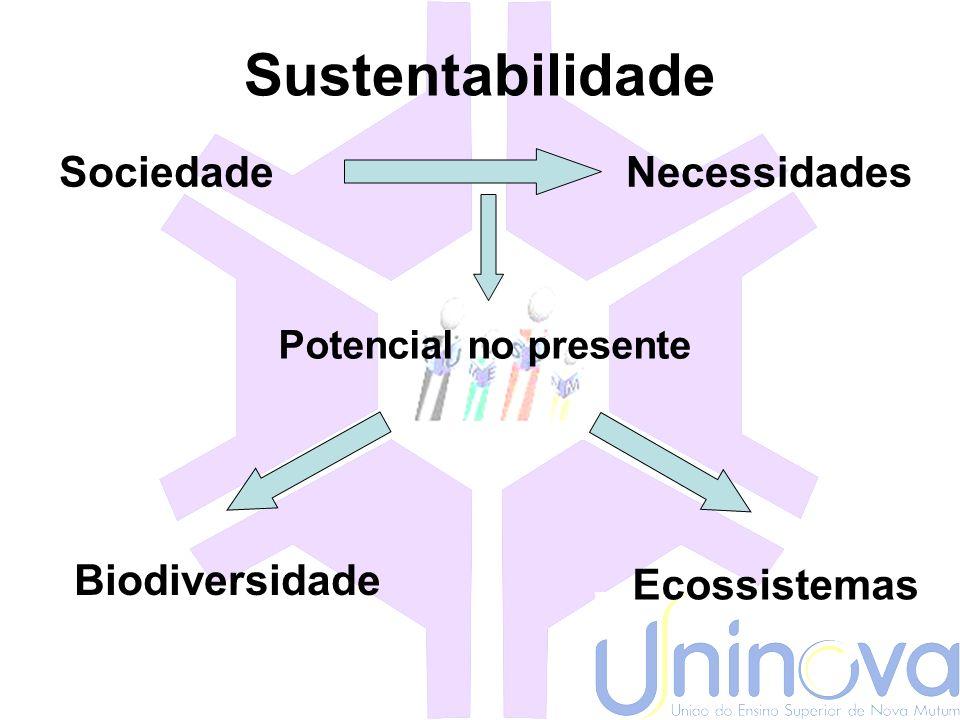 Sustentabilidade Sociedade Necessidades Biodiversidade Ecossistemas