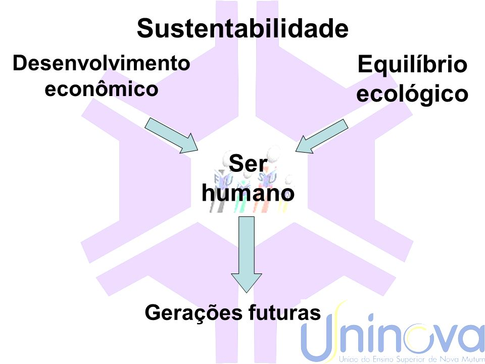 Sustentabilidade Equilíbrio ecológico Ser humano Desenvolvimento