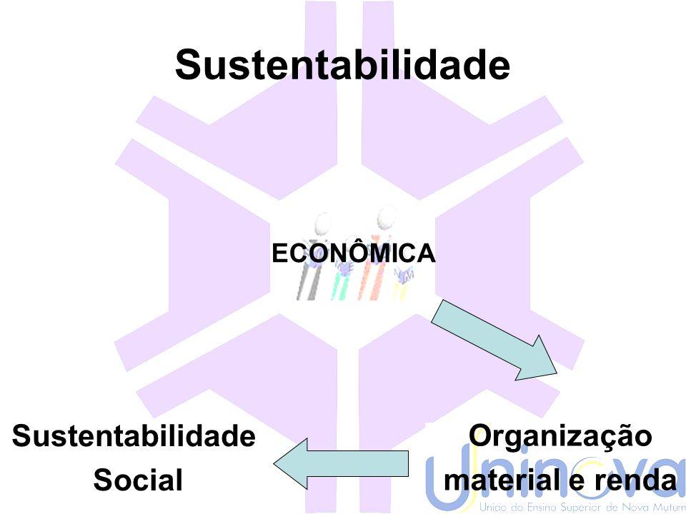 Sustentabilidade Sustentabilidade Social Organização material e renda