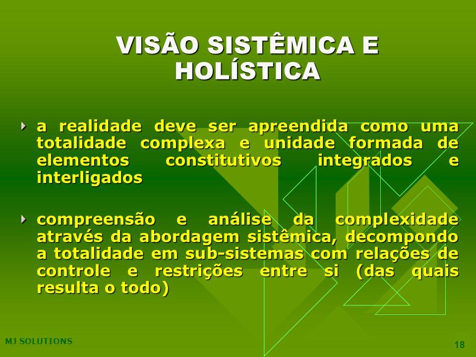 VISÃO SISTÊMICA E HOLÍSTICA