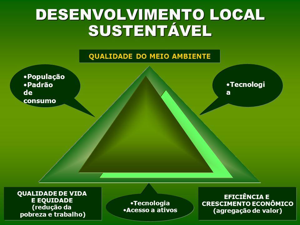 DESENVOLVIMENTO LOCAL SUSTENTÁVEL