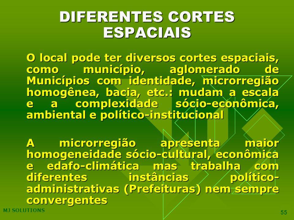 DIFERENTES CORTES ESPACIAIS