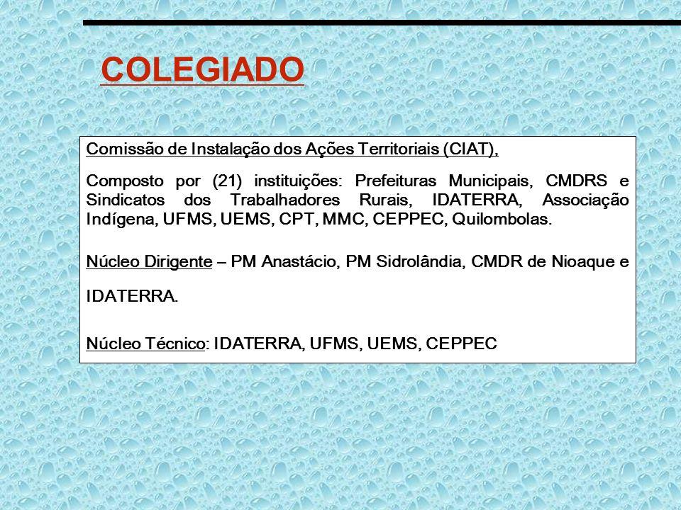 COLEGIADO Comissão de Instalação dos Ações Territoriais (CIAT),