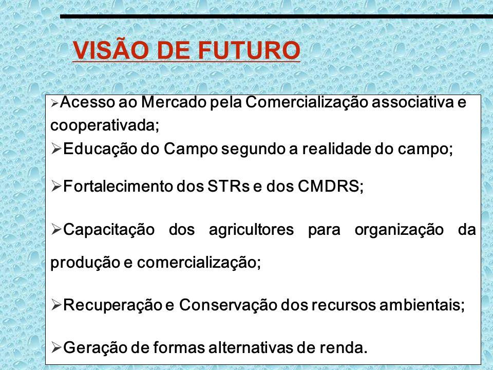 VISÃO DE FUTURO cooperativada;