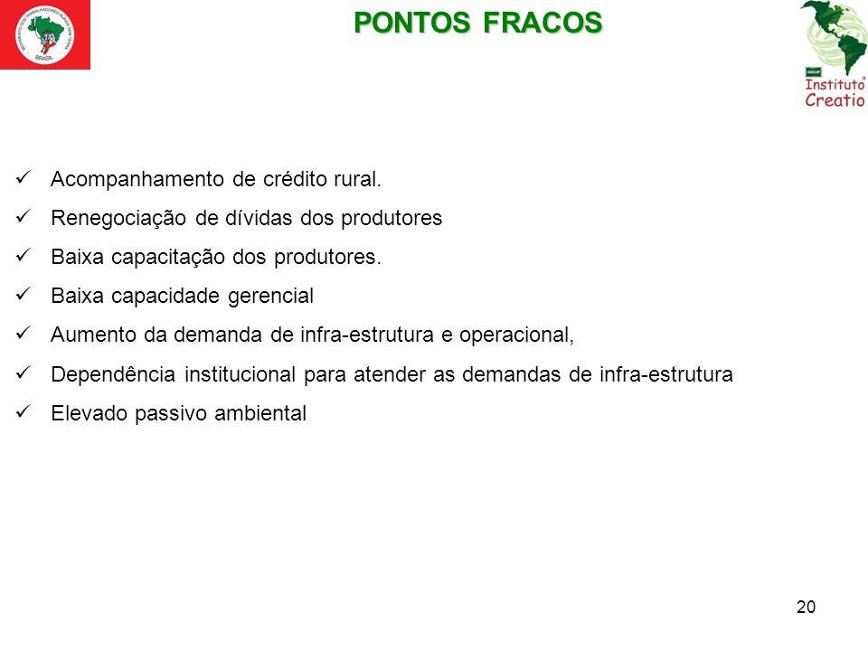 PONTOS FRACOS Acompanhamento de crédito rural.