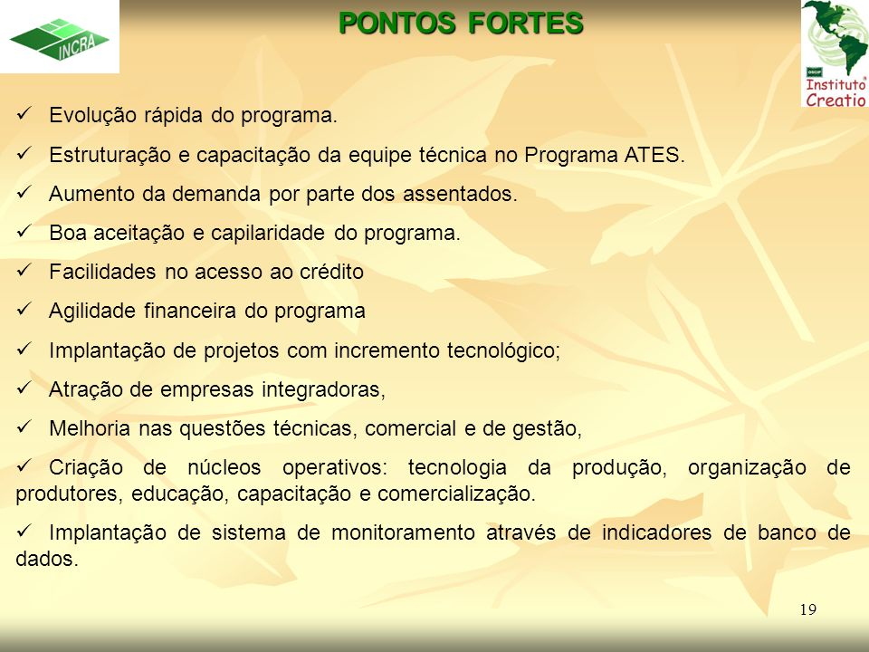 PONTOS FORTES Evolução rápida do programa.