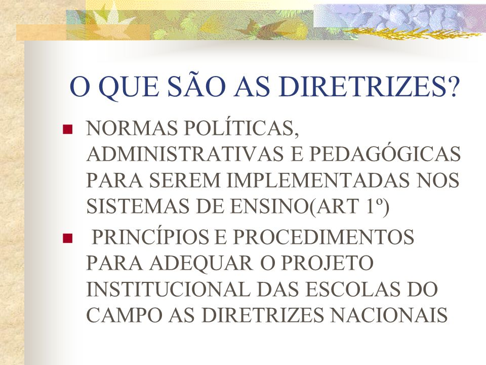 O QUE SÃO AS DIRETRIZES NORMAS POLÍTICAS, ADMINISTRATIVAS E PEDAGÓGICAS PARA SEREM IMPLEMENTADAS NOS SISTEMAS DE ENSINO(ART 1º)