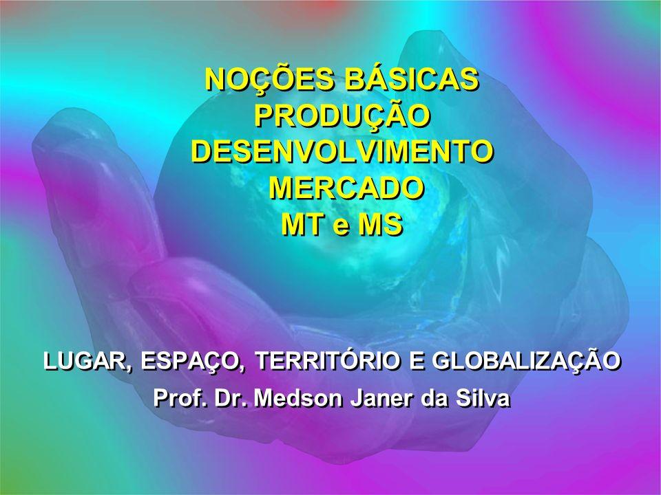NOÇÕES BÁSICAS PRODUÇÃO DESENVOLVIMENTO MERCADO MT e MS