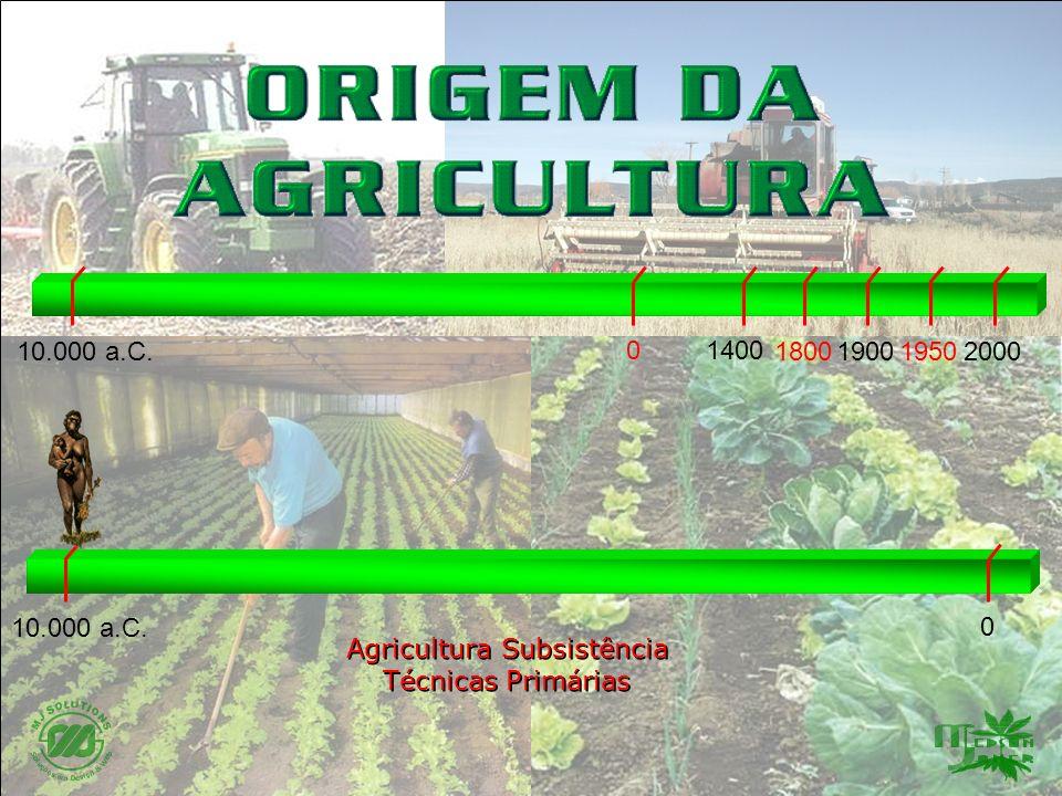 Agricultura Subsistência