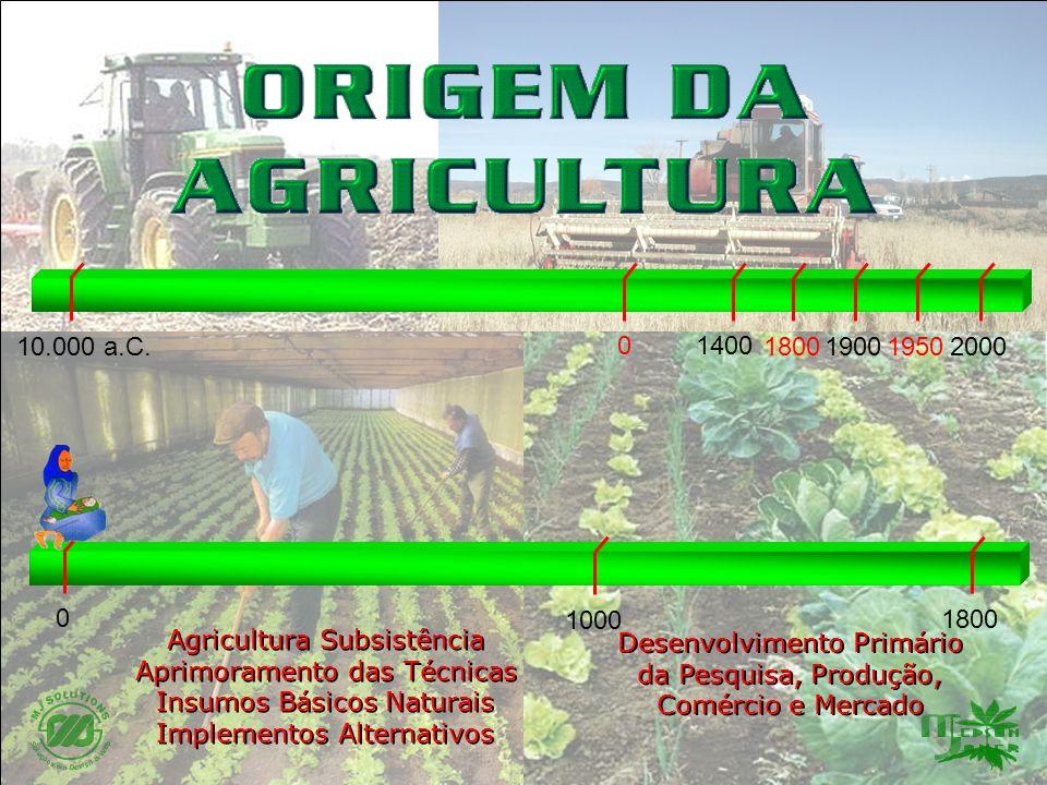 Agricultura Subsistência Aprimoramento das Técnicas