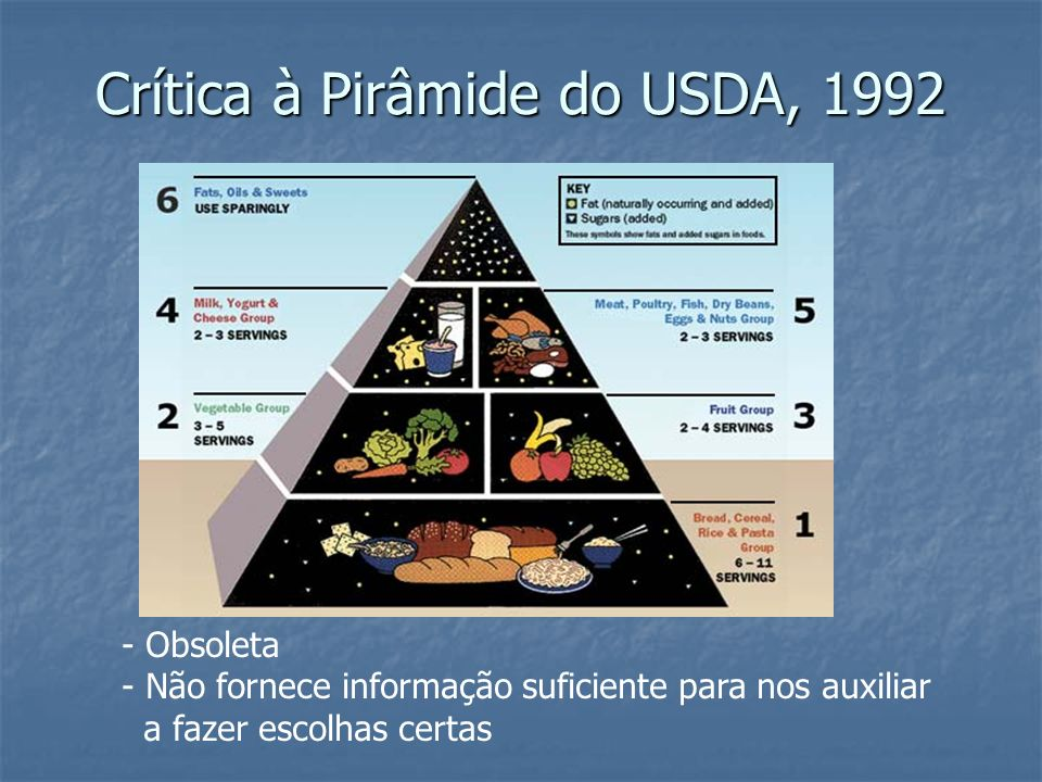 Crítica à Pirâmide do USDA, 1992