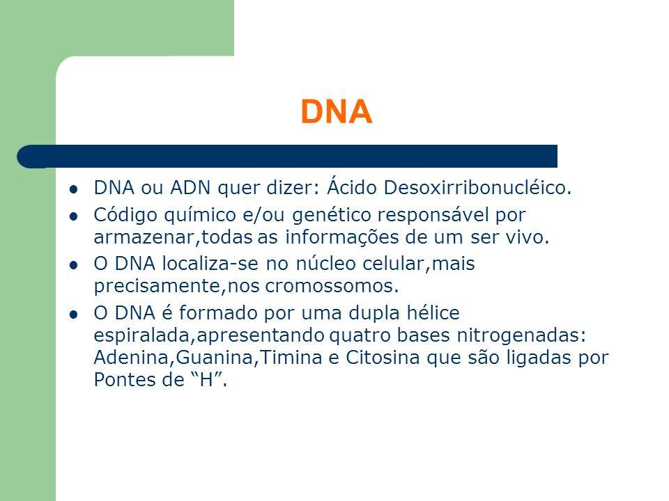 DNA DNA ou ADN quer dizer: Ácido Desoxirribonucléico.