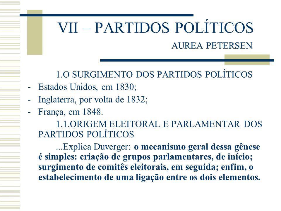 VII – PARTIDOS POLÍTICOS AUREA PETERSEN