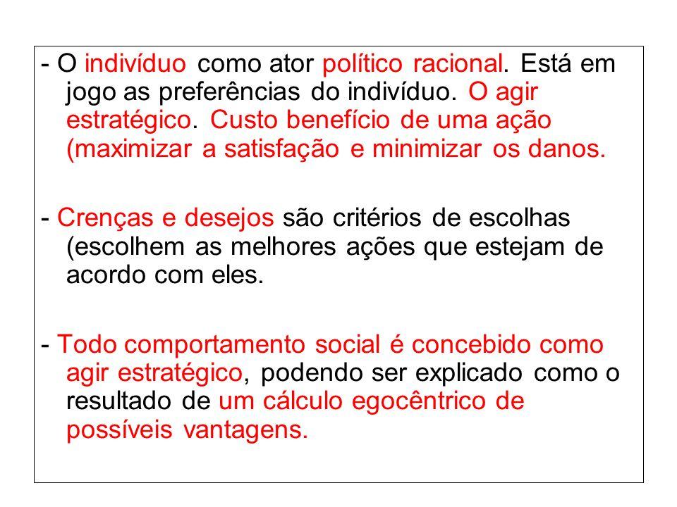 - O indivíduo como ator político racional