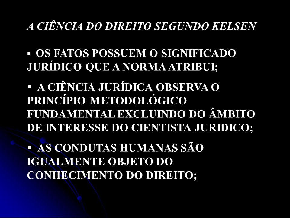 A CIÊNCIA DO DIREITO SEGUNDO KELSEN
