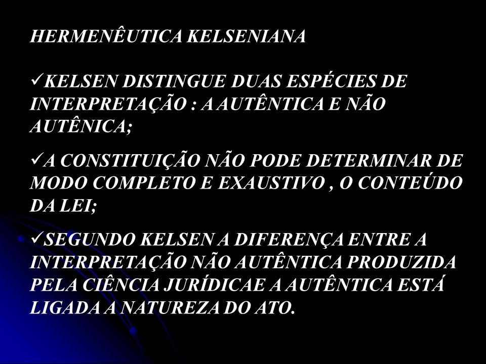 HERMENÊUTICA KELSENIANA