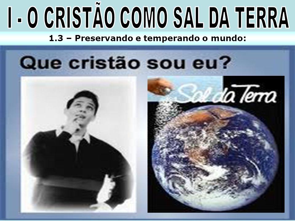 I - O CRISTÃO COMO SAL DA TERRA
